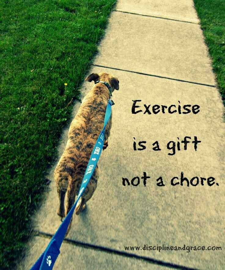 Exercise is a gift not a chore exercise crossfit