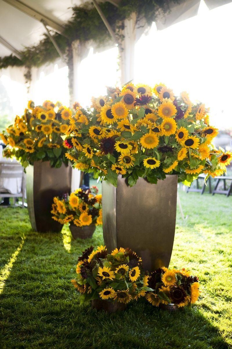 sunflower reception wedding flowers, wedding decor