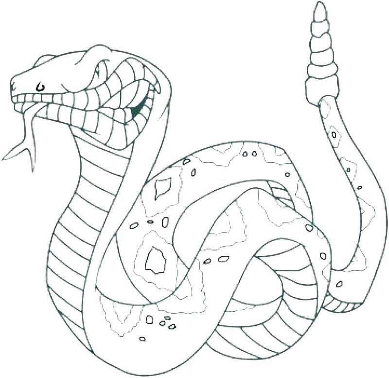 Snake Coloring Pages Pdf Printable Free Coloring Sheets Animal Coloring Pages Snake Coloring Pages Animal Coloring Books