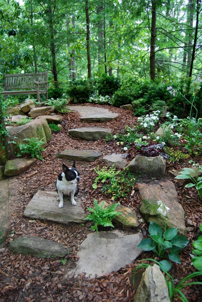23 Landscape Ideas For A Wooded Backyard Woodland Garden Garden Stones Beautiful Gardens