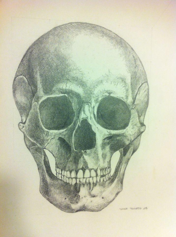 Disegno teschio cranio chiaro scuro disegni pinterest for Teschi da disegnare