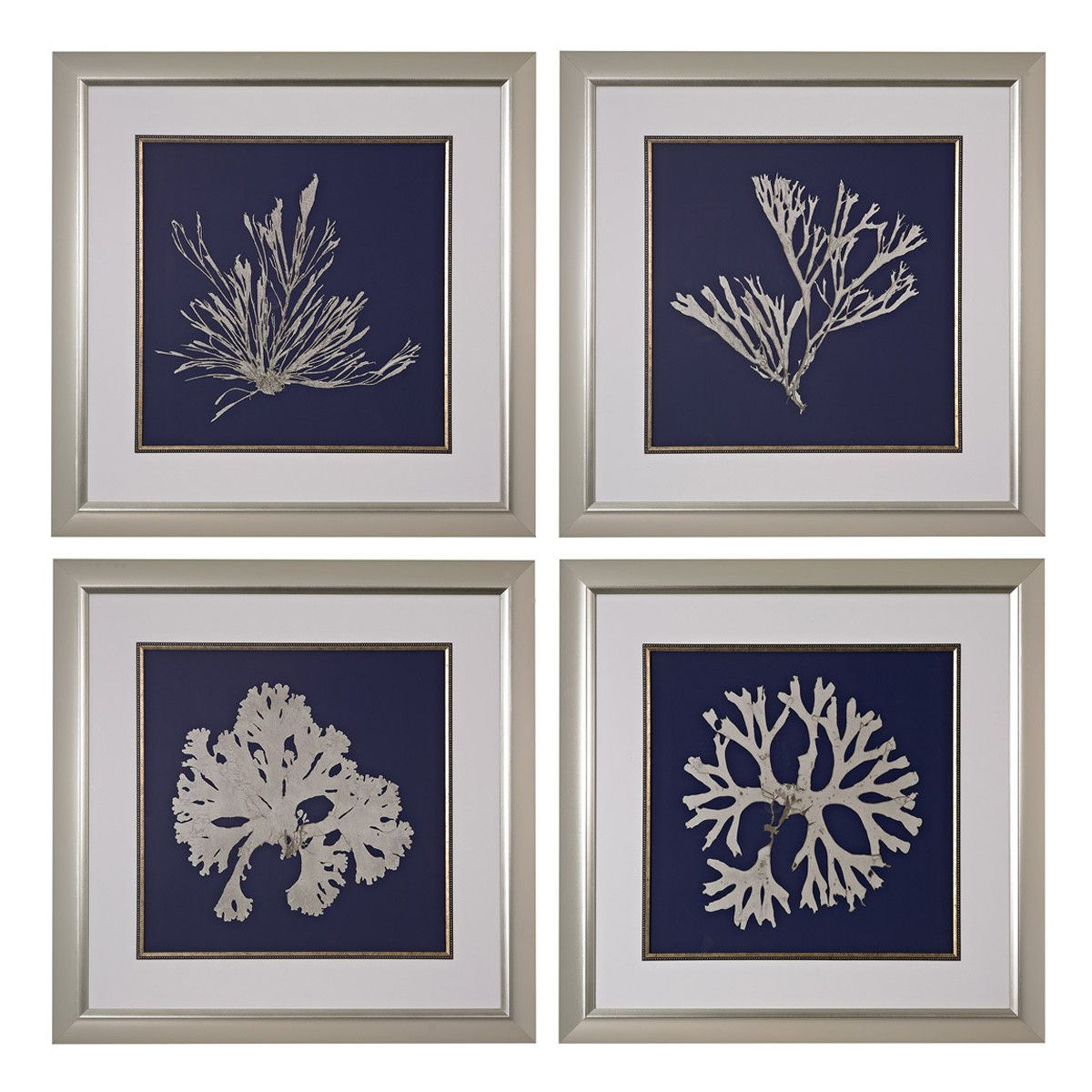 Seaweed on navy framed art in silver set of seaweed and products
