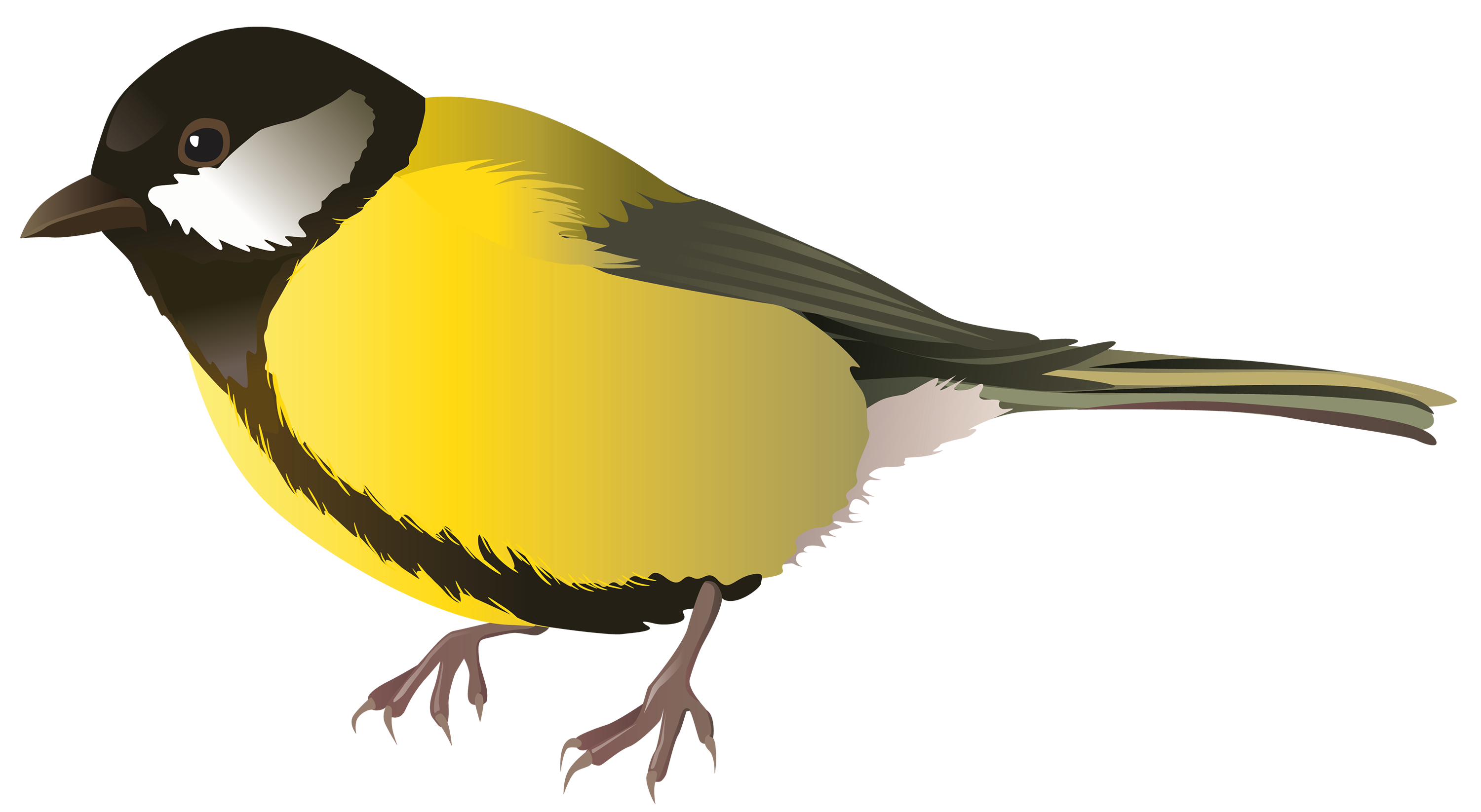 yellow bird png clipart cute birdies pinterest bird clipart rh pinterest com chickadee clip art free black capped chickadee clipart