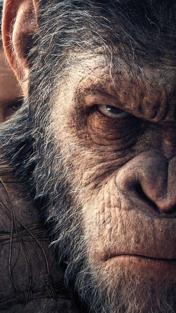 Creanavt Https Creanavt Tumblr Com Archive Gorilla Tattoo Monkey Art Planet Of The Apes