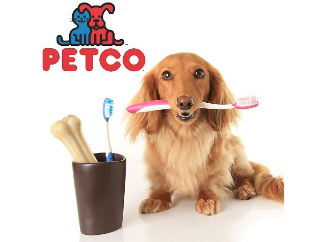 Up to 50 Off Sale Up to Extra 30 Off Petco Sale (petco