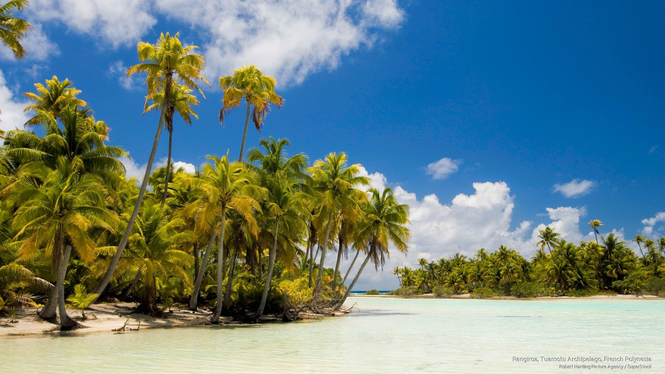 Rangiroa, Tuamotu Archipelago, French Polynesia