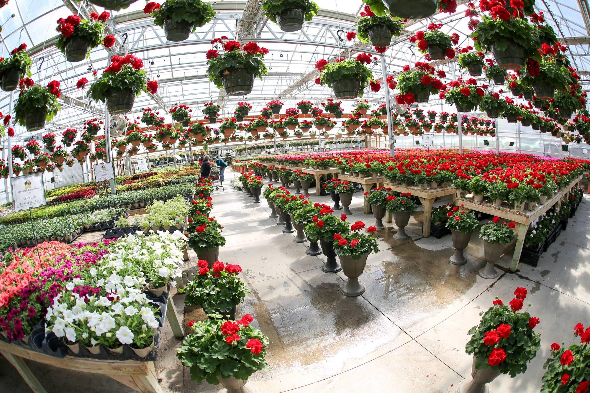 Nursery Garden Center Stamford Norwalk Florist Mulch
