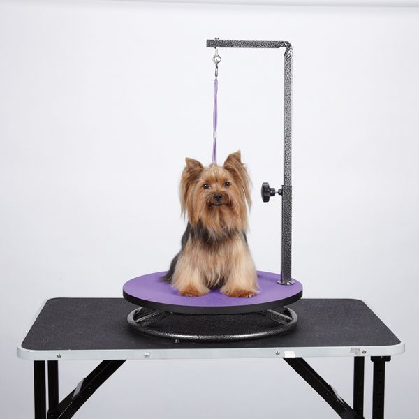 Master Equipment Small Dog Grooming Table Top Purple Dog Grooming Supplies Pet Grooming Dog Grooming Salons