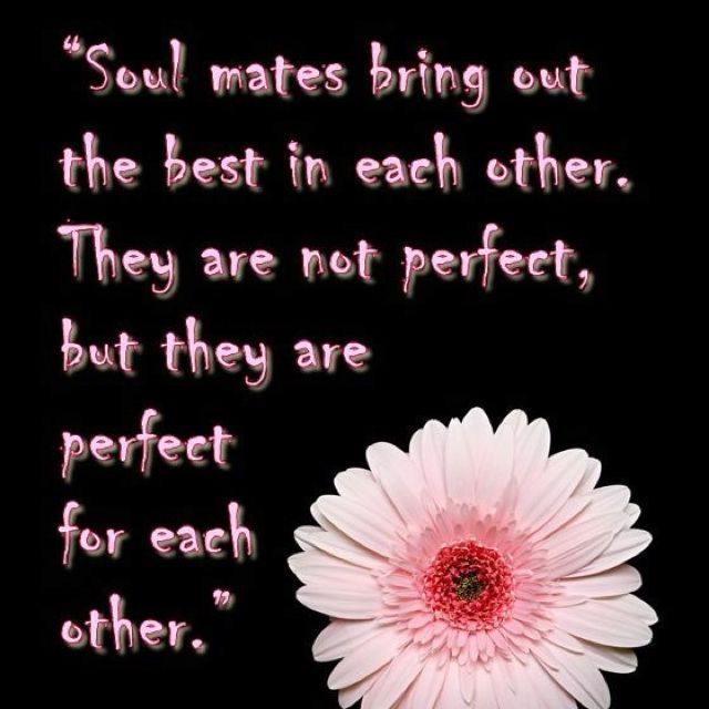 Soulmates Love Quotes About Life: Love Quotes, Love