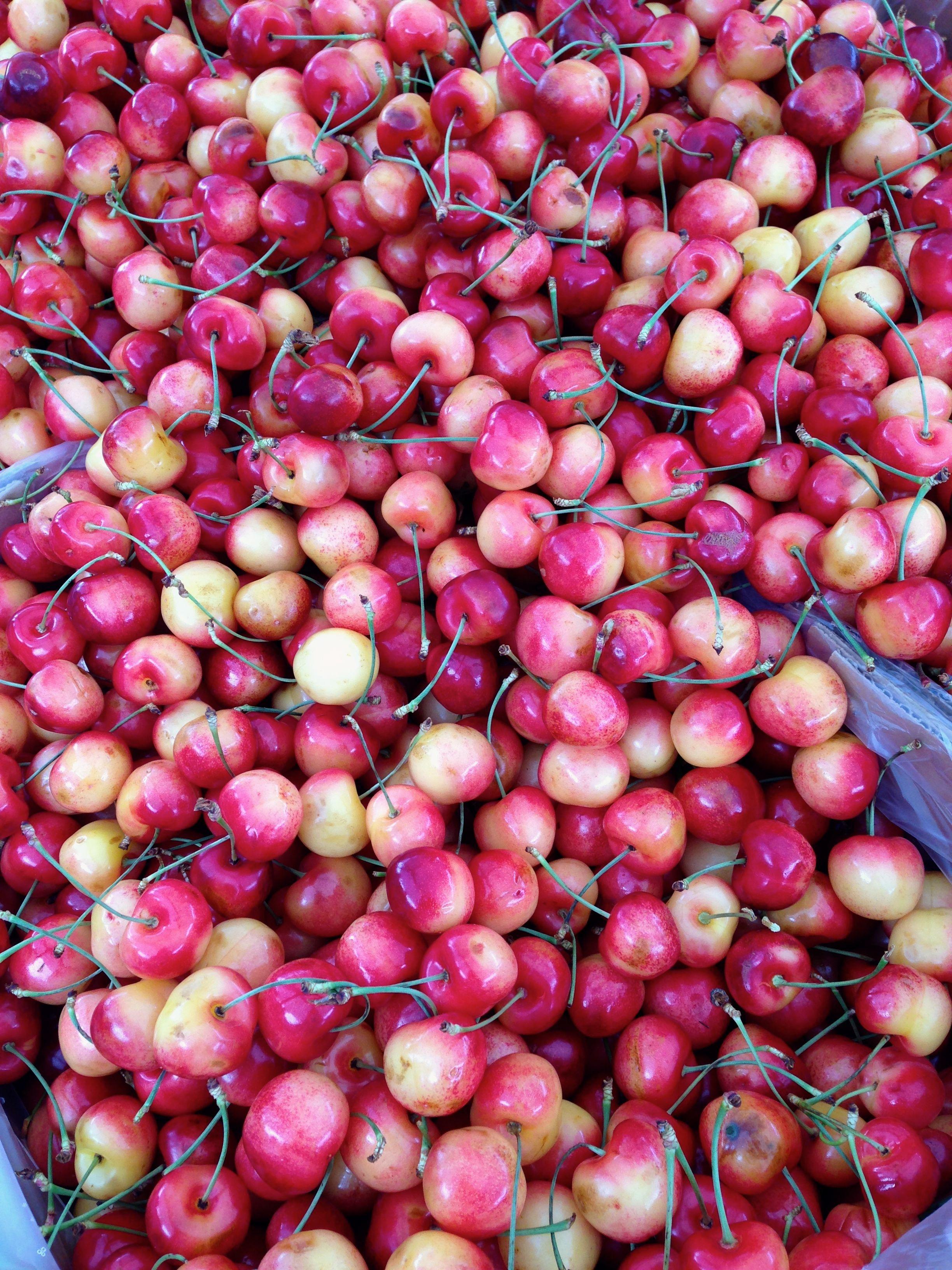 Royal Ann Cherry time!   Forest Grove, Or. Farmers Mkt.