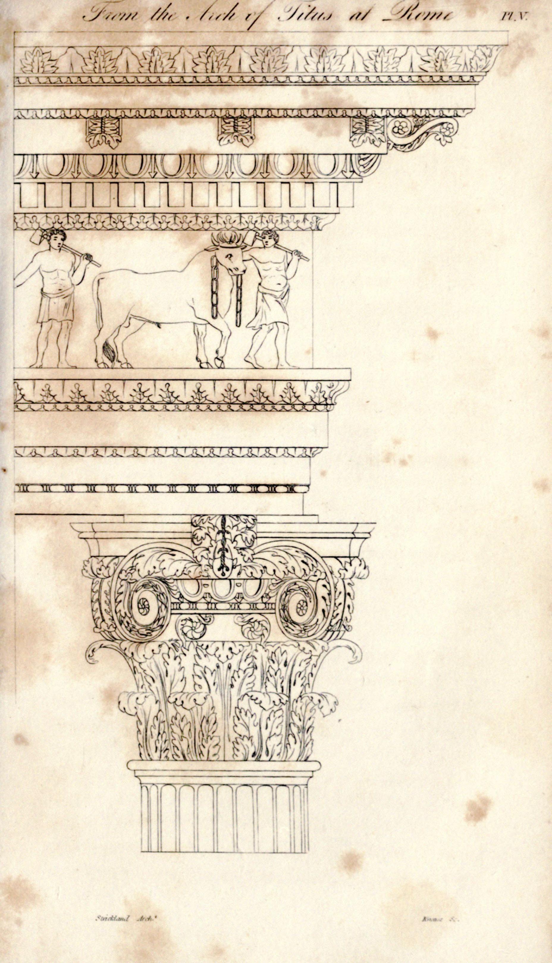 design architectural roman acanthus plinths - Roman Design Architecture
