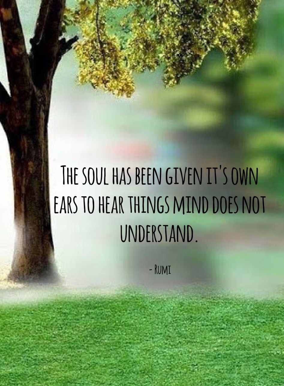 Soul talk #rumi #rumiquotes #quotes #journey #life #spirituality #sufi  #soul #conciousness #light #poetry | Rumi quotes soul, Rumi quotes, Rumi