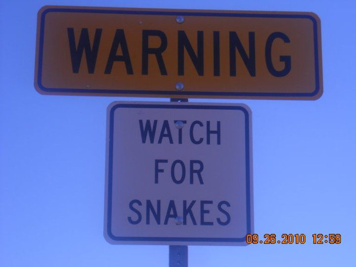 Watch For Snakes