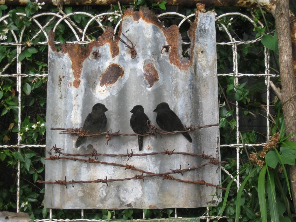 I like the idea of rusty barbed wire as an accent on corrugated metal signs tin birds on wire rusty corrugated iron