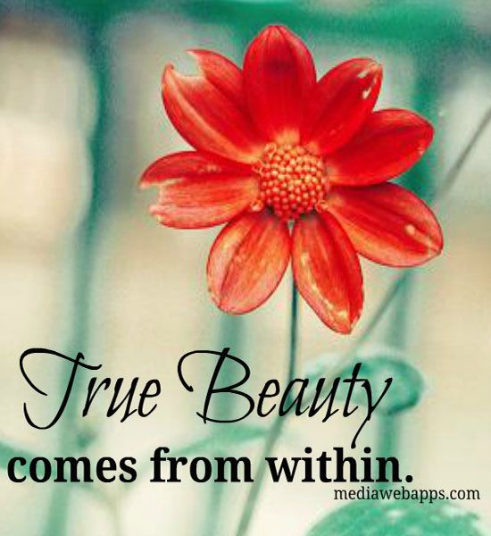 Pin On Flower Quotes