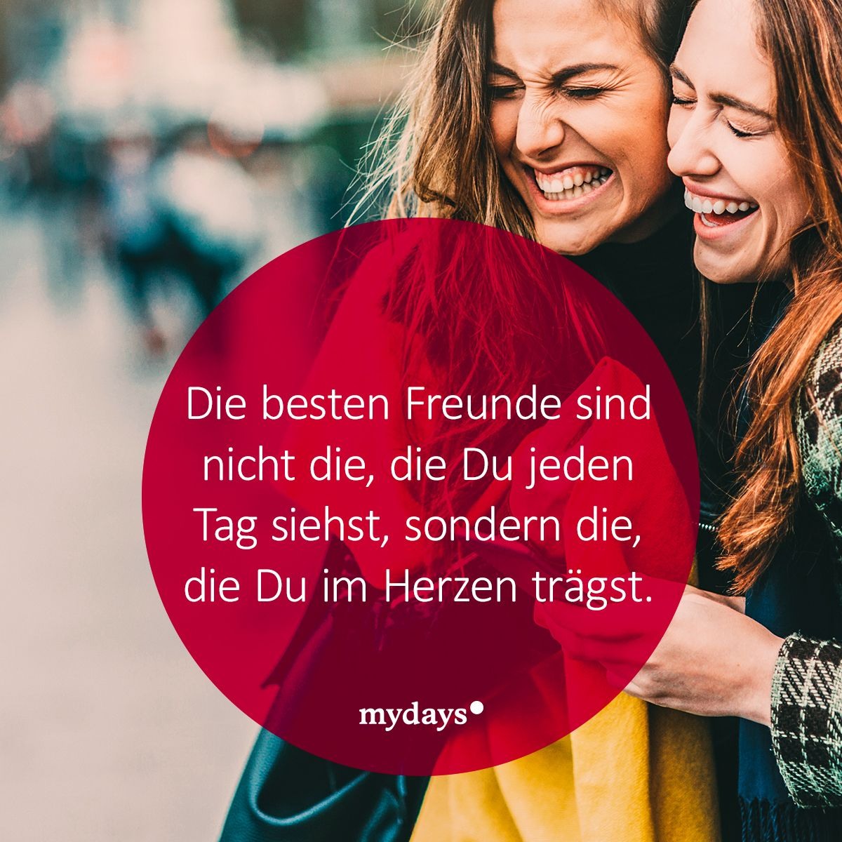 Sind Freunde Nicht Die Besten?