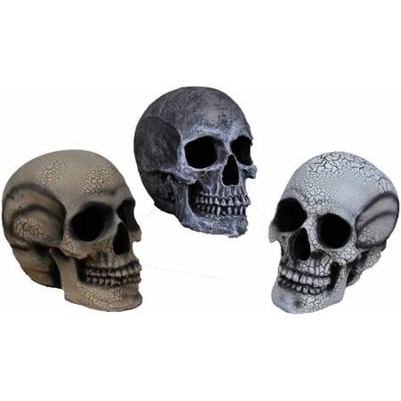 Small Realistic Skull Halloween Decoration