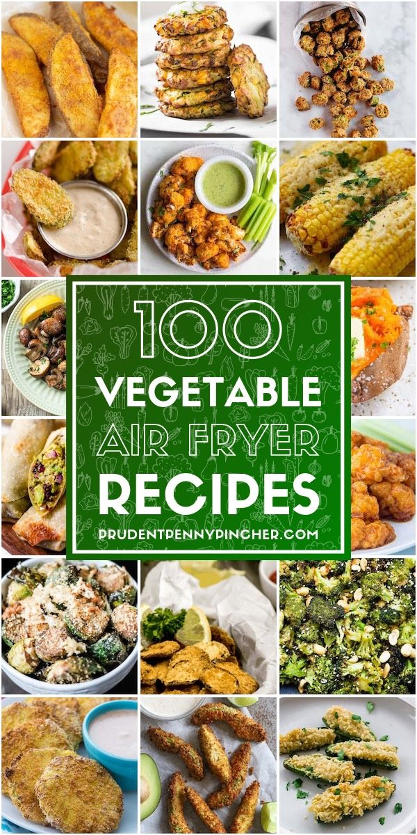 100 Vegetable Air Fryer Recipes Prudent Penny Pincher