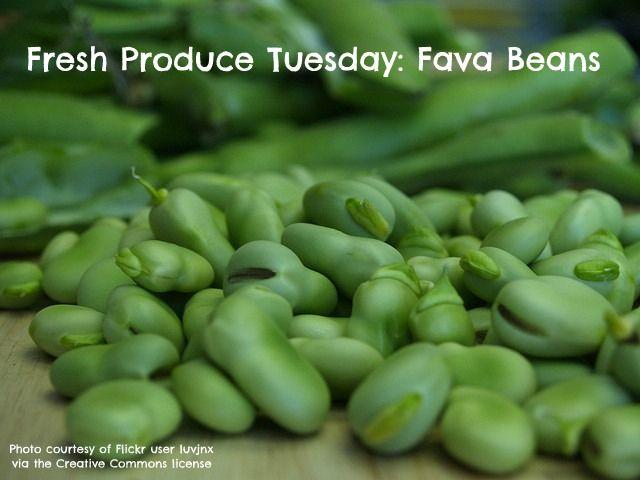 28 recipes for fava beans      #csa #farmersmarket #summerproduce #favabeans