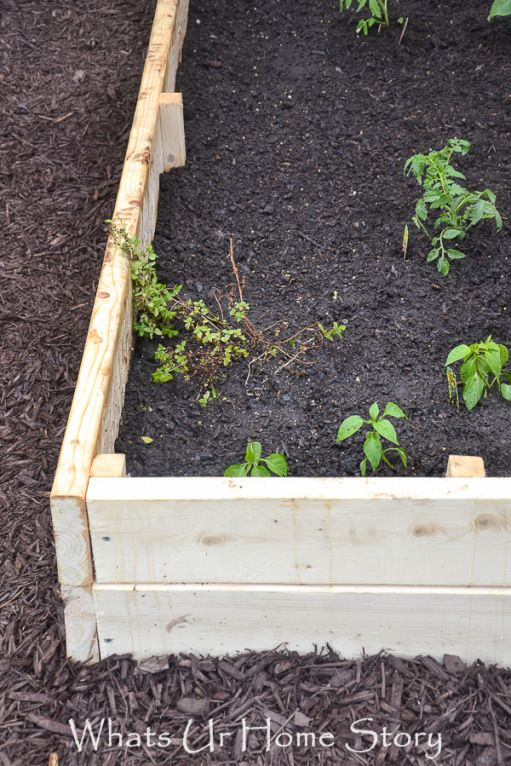 Easy tutorial on how to build a raised garden bed