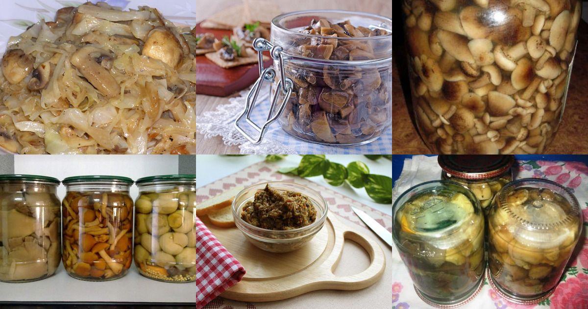 Блюда из бекона сырого рецепты фото русские фотографы