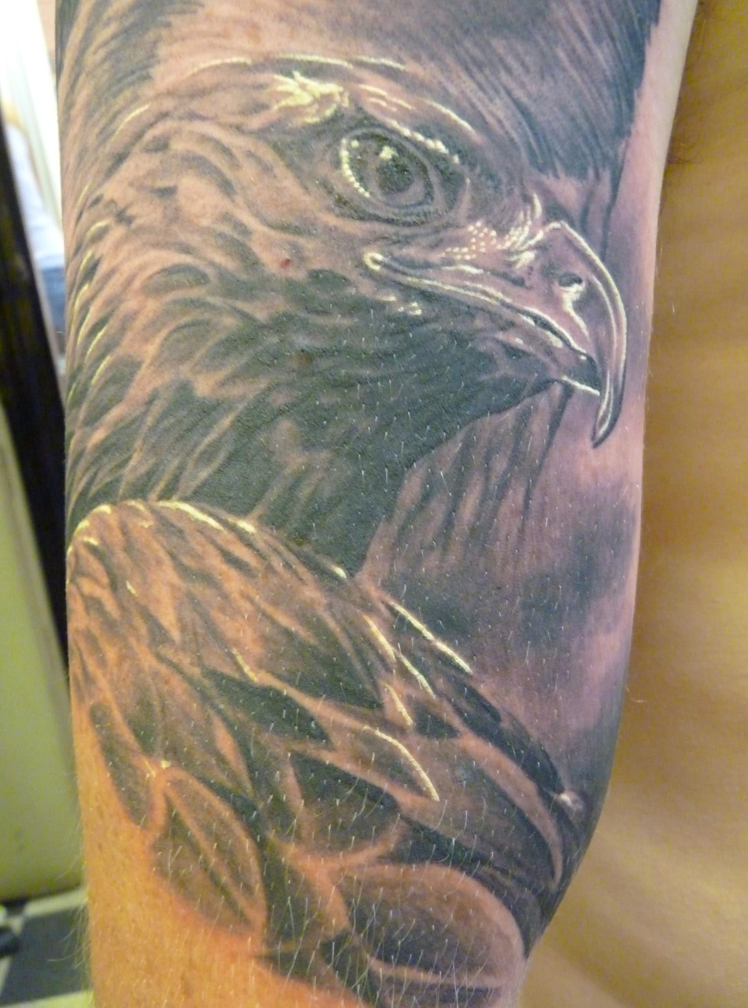 Bird tattoos designs ideas and meaning tattoos for you - Tattoo Eagle Tattoos Designs Ideas And Meaning Tattoos For You