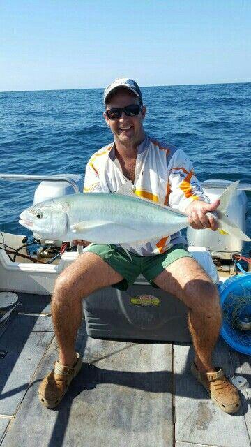 Beira Bludger Kingfish Fish Beira