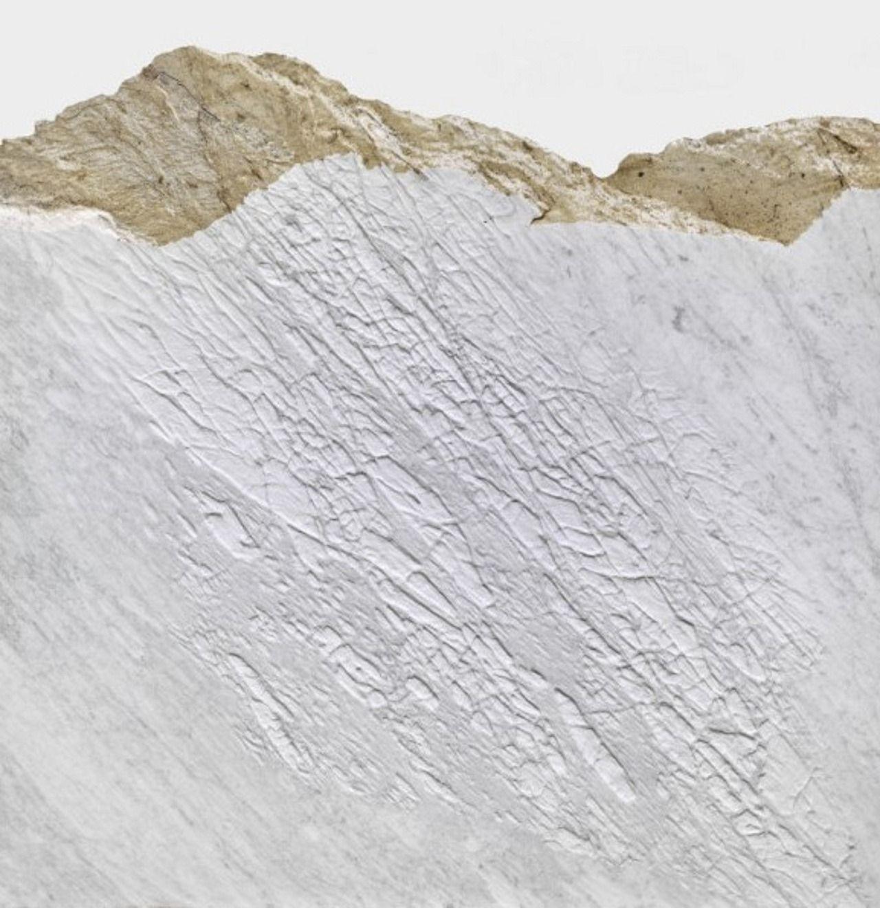 """istmos: """"Giuseppe Penone, """"Pelle del monte/Mountain Skin"""", 2012 """""""