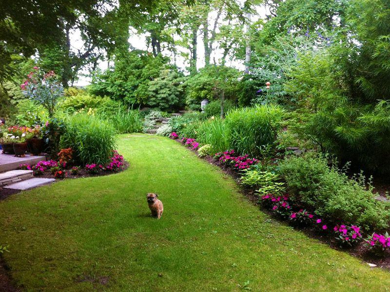 aa1bcb893c43e2734c0db51f32a49d3a - What Zone Is Long Island For Gardening