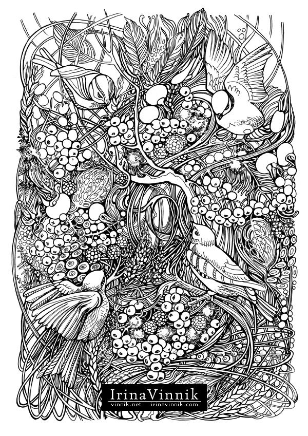 Coloring Pages Tangled Birds And Flowers Manic Botanic On Behance