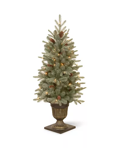 National Tree Company National Tree 4 5 Feel Real Frosted Arctic Spruce Entrance Tree With Cones In Artificial Christmas Tree Christmas Tree Shabby Christmas