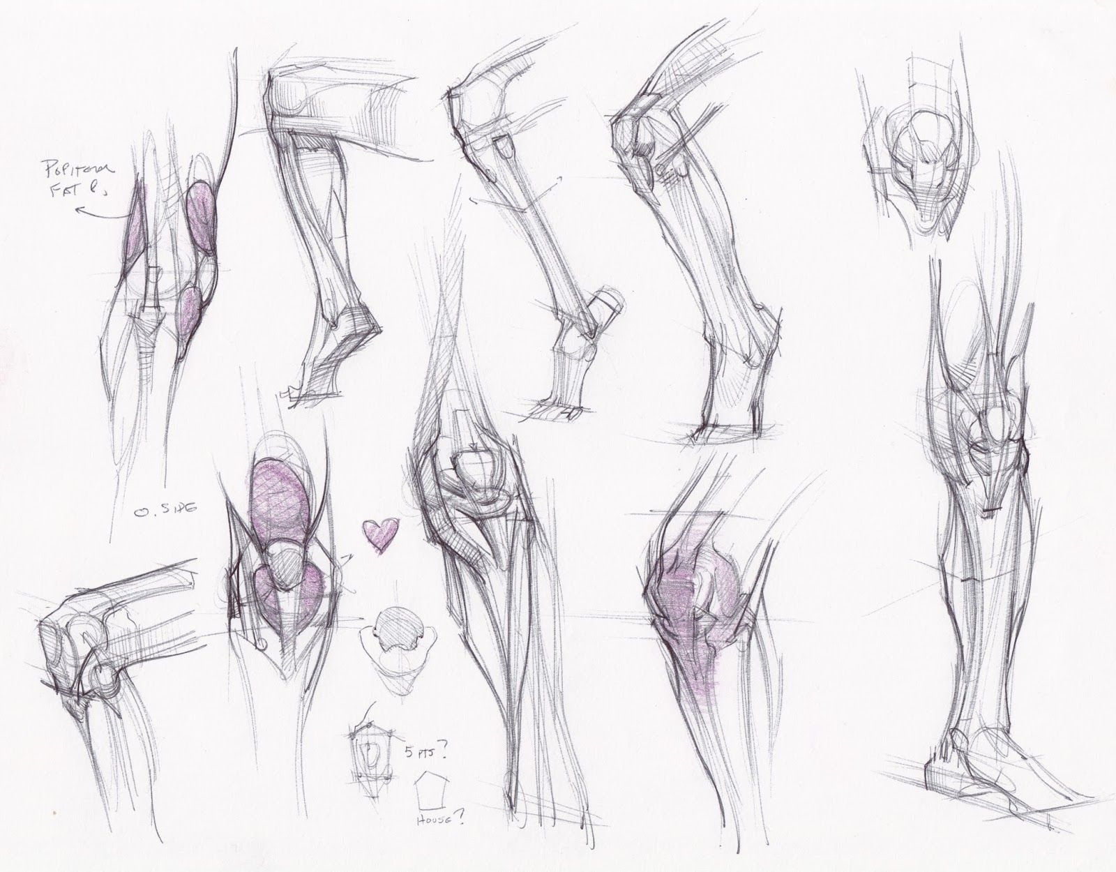 figuredrawing.info_news ☆ Find more at http://www.pinterest.com ...