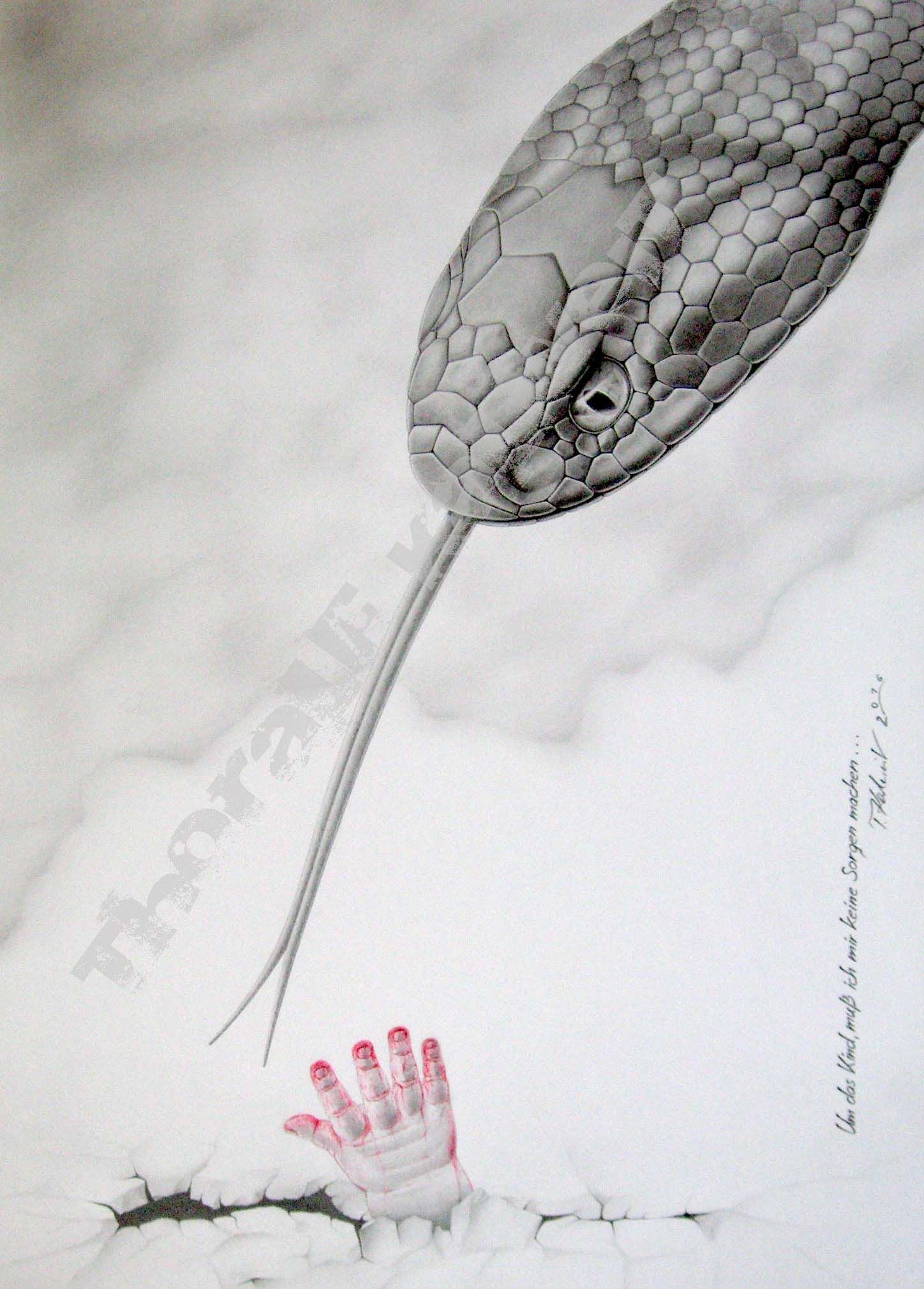 Schlange/Schlangen/Schlangenkopf/ Schlangen Zeichnung Bleistift ...