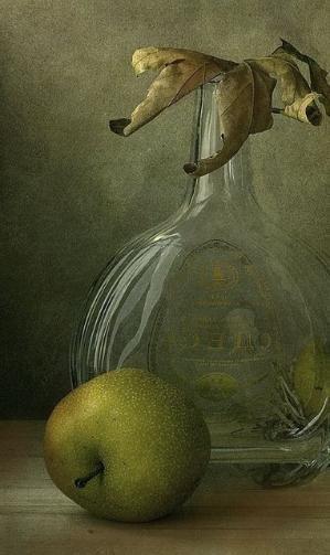 Still Life by Anna Nemoy Olive Green by VoyageVisuelle
