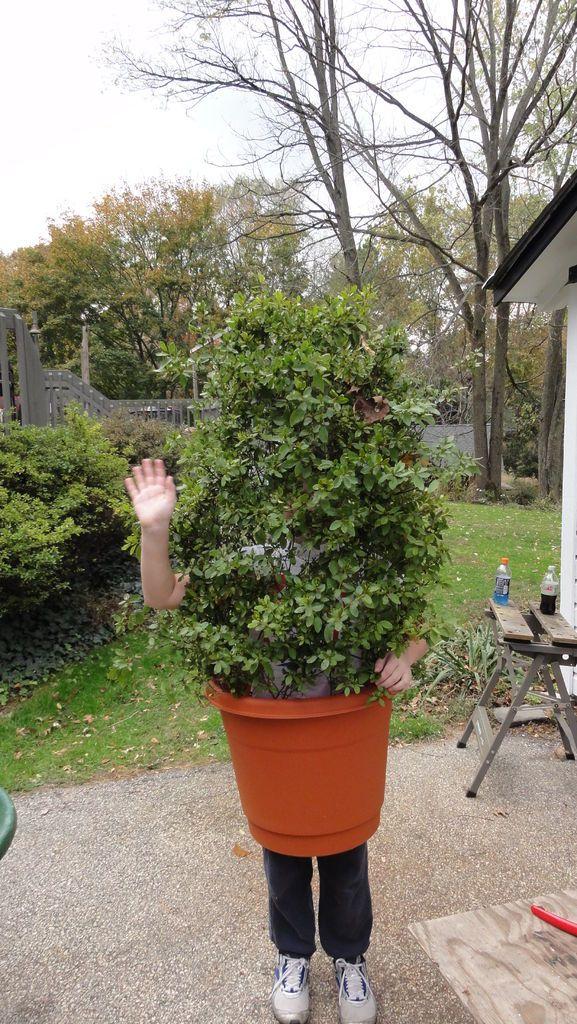Shrub Bush Plant Costume Tree Costume Scary Halloween