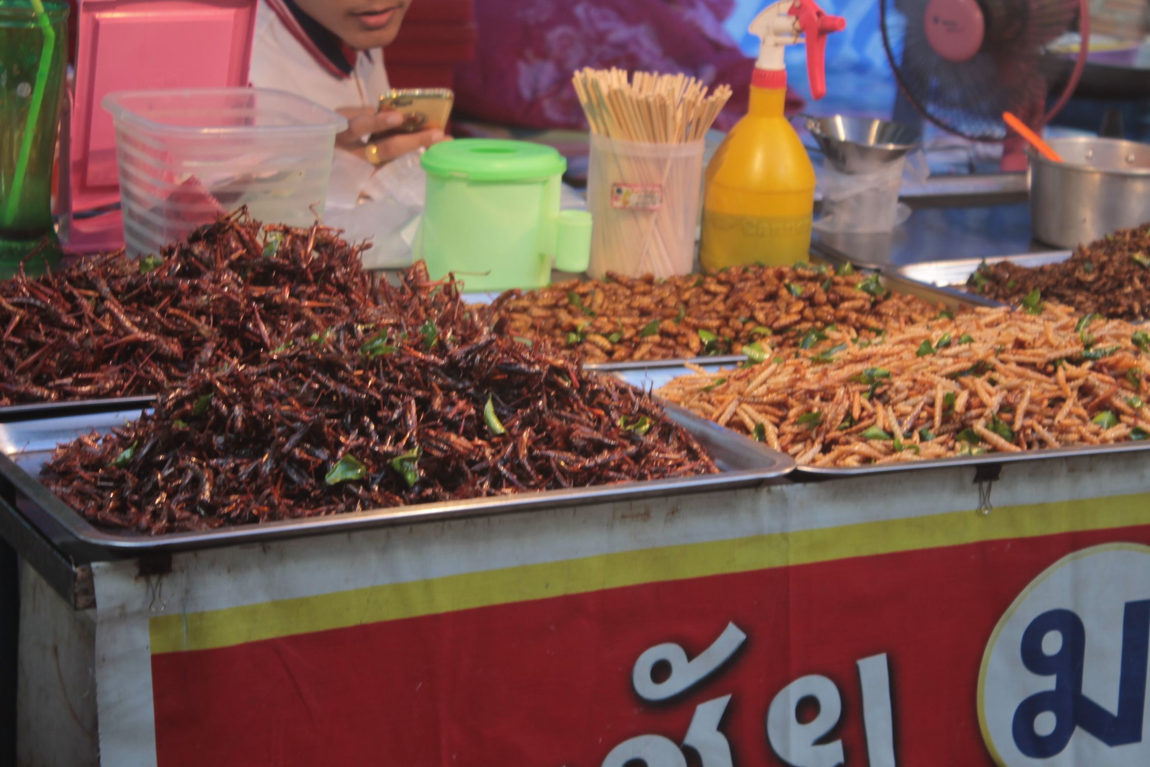 Puesto de bichos fritos en un mercado de Chalok