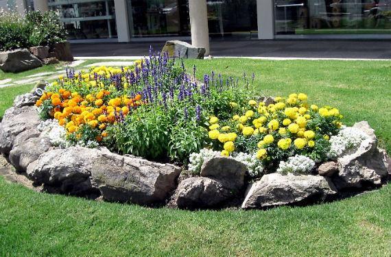 Diseño de minijardines Gardens, Landscaping and Patios