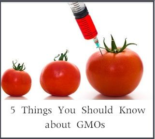 5 Things You Should Know about GMOs | Worldly or political
