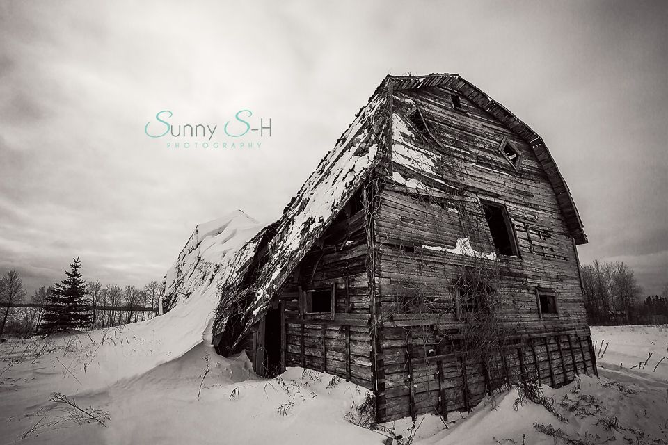 Prairie abandoned farm in winter.  The elements slowly take these once mighty buildings back.  #exploremanitoba #abandonment #abandon