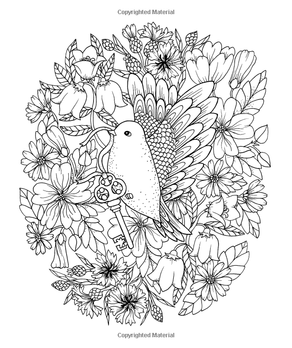 Amazon Twilight Garden Coloring Book Published In Sweden As Blomstermandala