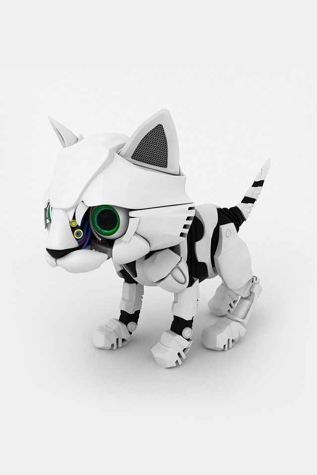 Robot Cat Toy >> Everyone Should Have Robot Kitty S Geeking Out Robot Cat