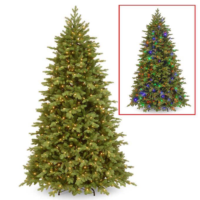 2 2 M 7 5 Ft Feel Real Fraser Fir Hinged Tree Christmas Tree Clear Lights Fraser Fir Christmas Tree Pre Lit Christmas Tree