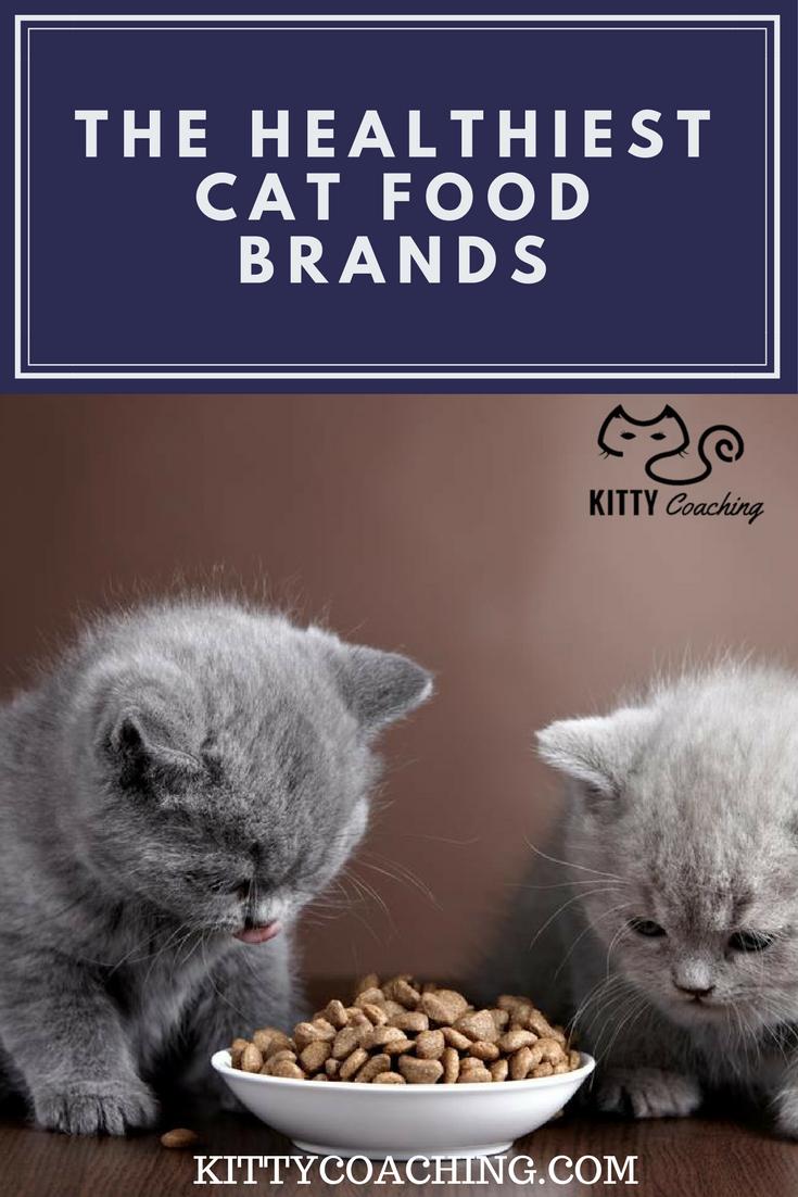 Healthiest Cat Food Brands 2018 Healthy Cat Food Cat Food