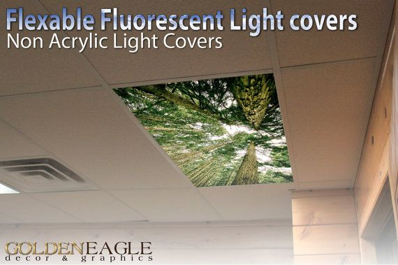Office ceiling light covers Replacement Plastic Flexible Fluorescent Light Cover Films Skylight Ceiling Office Medical Dental Trees Perspective Gree Amazoncom Flexible Fluorescent Light Cover Films Skylight Ceiling Office