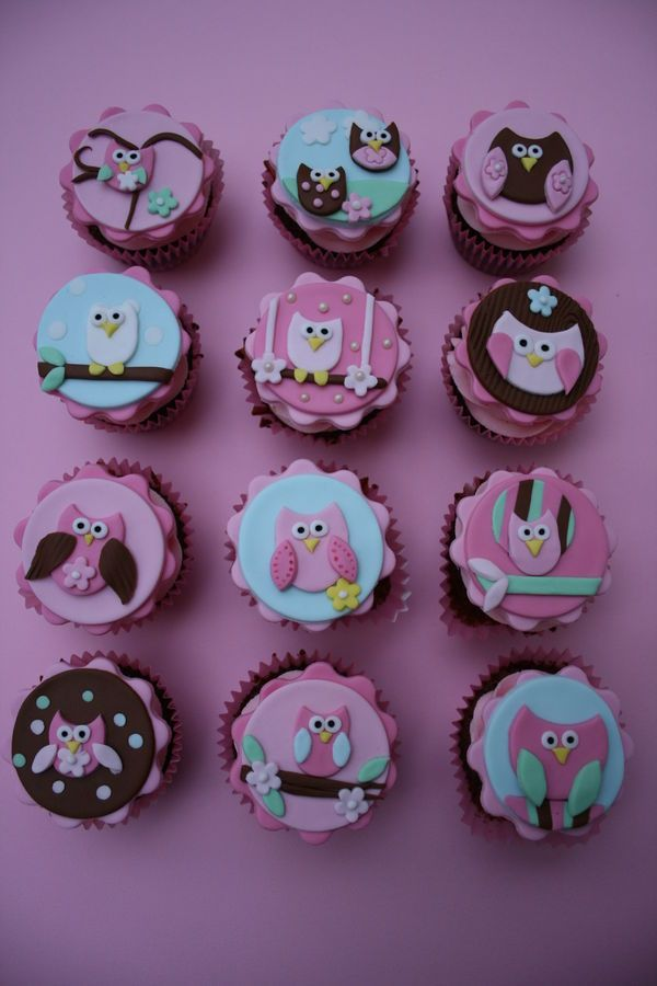 Set Of Owl Inspired Cupcakes For A Three Year Old Girl These