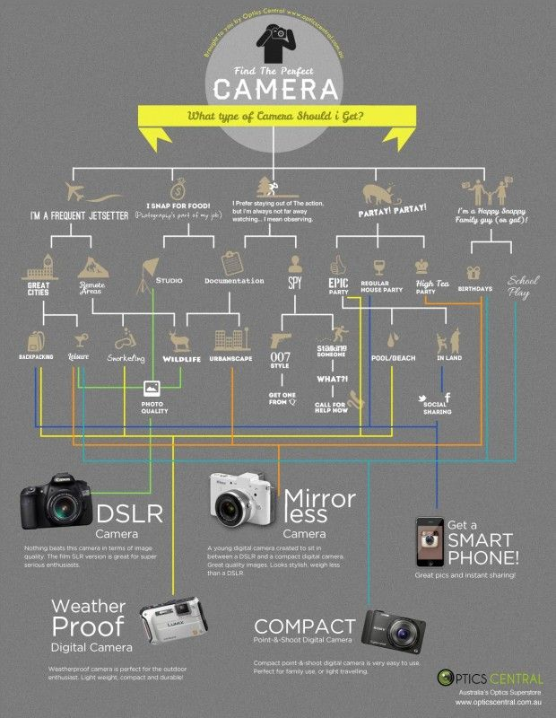Find The Perfect Camera Fribly Types Of Cameras Perfect Camera Photography Cheat Sheets