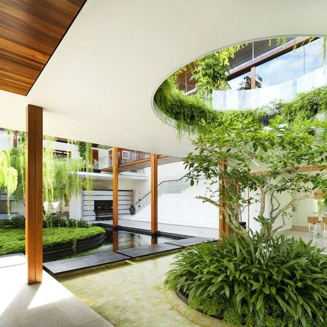 expectacular jardin interior en este dise ointerior de