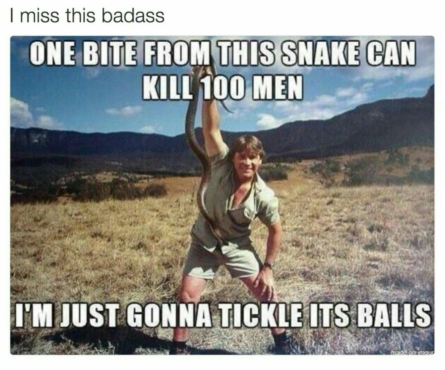 Pin By Draven Hayes On Too Funny Steve Irwin Funny Pictures Funny Memes