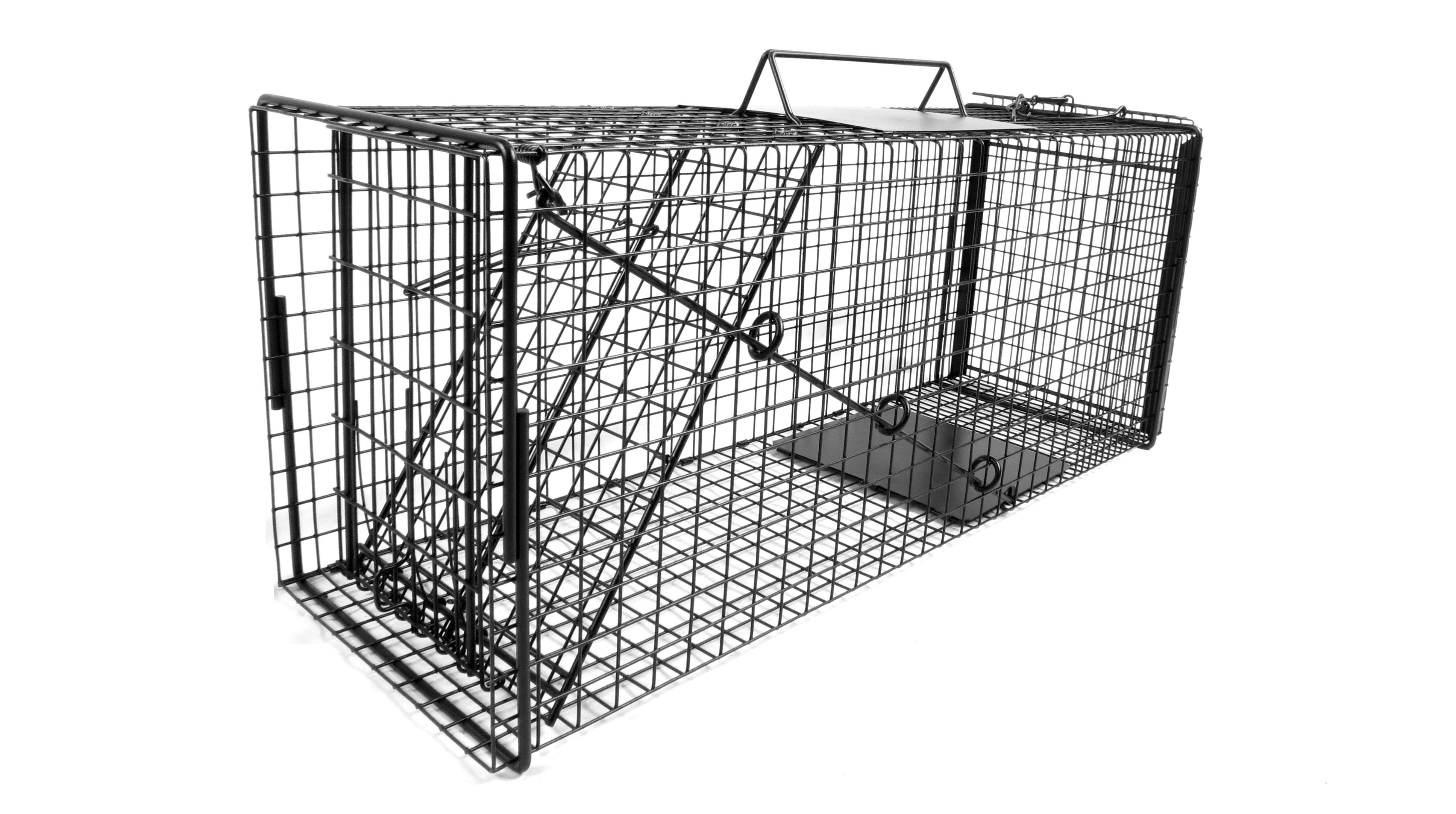 This is our favorite humane trap to use! Tnr cats, Cat