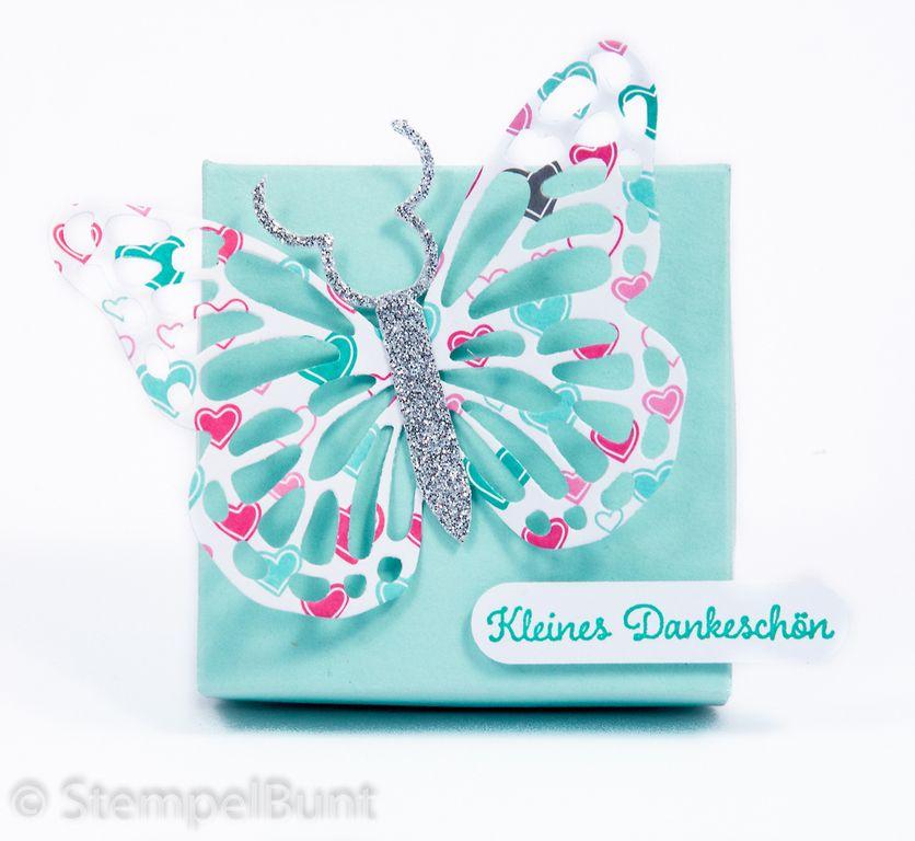 Schachtel Schmetterling